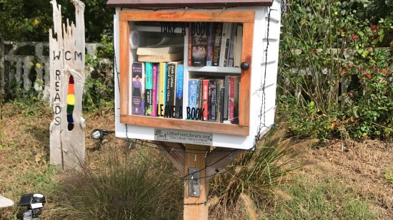 Little Free Libraries – Bringing Communities Together Over Books