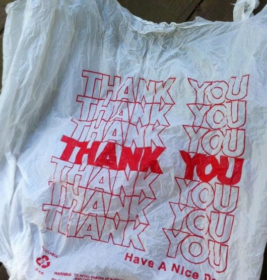 cleanplasticbag.jpg