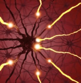 Neurofeedback… What is it, who can benefit and how does it work?