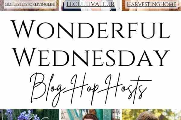 Wonderful Wednesday Blog Hop #437