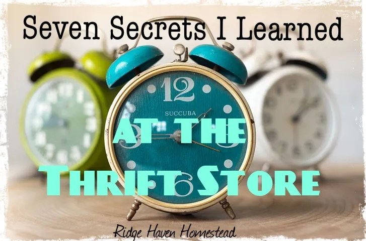 bloghop440 seven secrets i learned at the thrift shop ridgehavenhomestead a clock with text for the article name