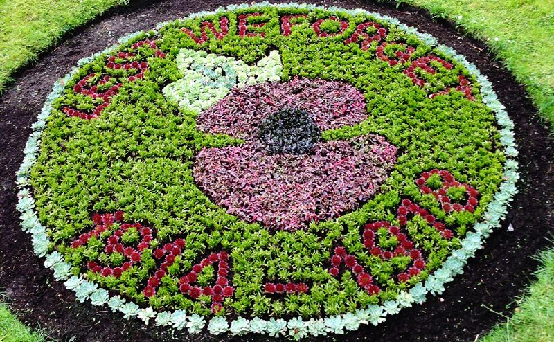 World War 1 flower bed image