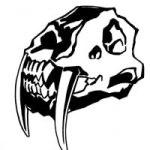 sabretooth skull