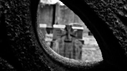 Their Power Is To Sit Still. Mount Auburn Cemetery Cambridge, MA