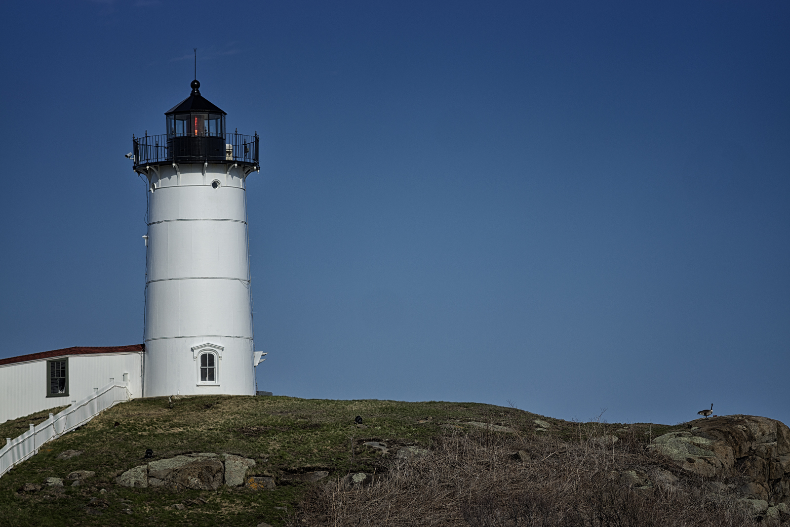 The Atlantic is in front of you, Cape Neddick lighthouse is behind you, said the goose. York, ME