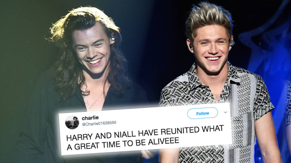 One Direction Fans Spot Harry Styles and Niall Horan Together For Birthday