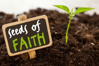 seed of faith.jpg