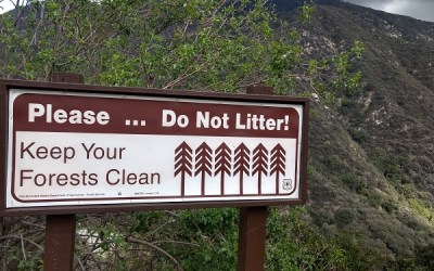 Understanding Leave No Trace Principles