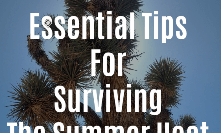 Ten Essential Hiking Tips To Survive The Summer Heat