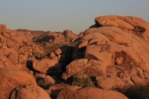 Joshua Tree National Park, red rocks, hiking, day guide, points of interest