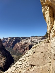 Observation Point Trail, Zion National Park