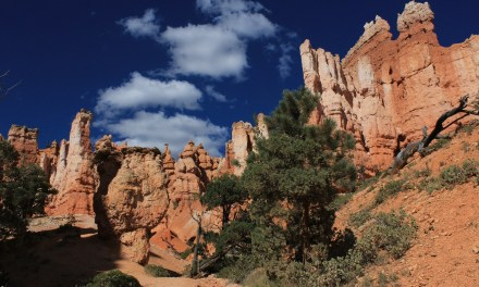 Hiking Navajo Loop and Queen's Garden Trail
