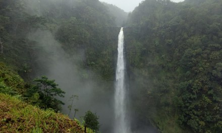 A Complete Hiking Guide To Akaka Falls State Park