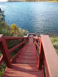 Lake Miramar, Hiking San Diego