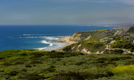 Crystal Cove State Park Trail Guide