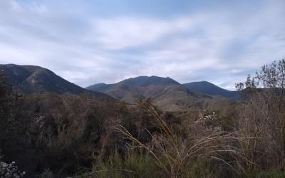 Sitton Peak Loop Trail and Bear Ridge