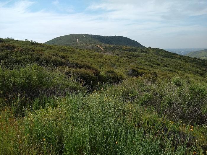 South Fortuna Peak