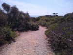 Torrey Pines Hiking Trail Guide, San Diego,