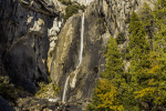 A slow exposure of Lower Yosemite Falls trail during the late fall.