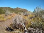 Garnet Peak hiking trail guide