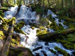 Clearwater Falls Hiking Trail Guide, Umpqua National Forest, Oregon