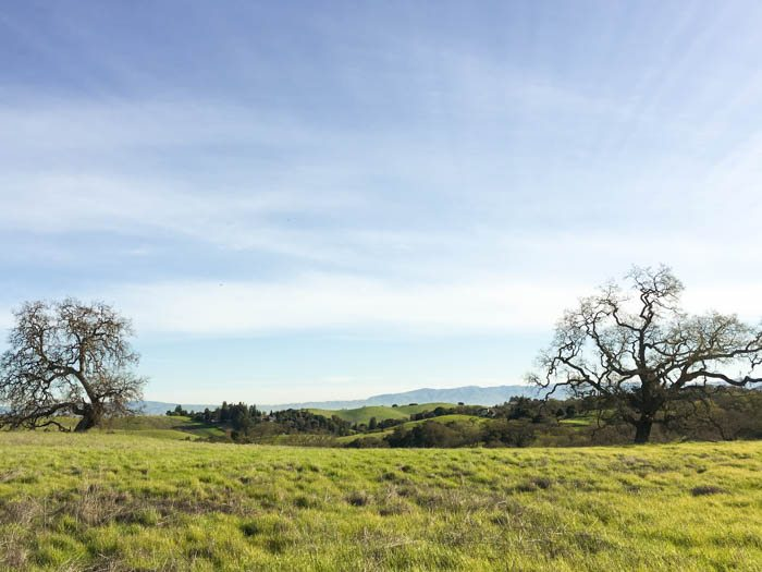 Arastradero Preserve and Other Hikes with The Simple Proof
