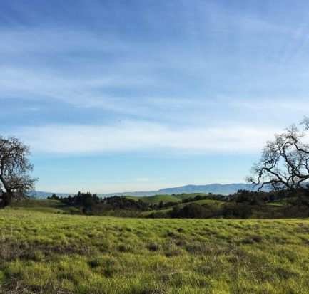 Arastradero Preserve | The Simple Proof