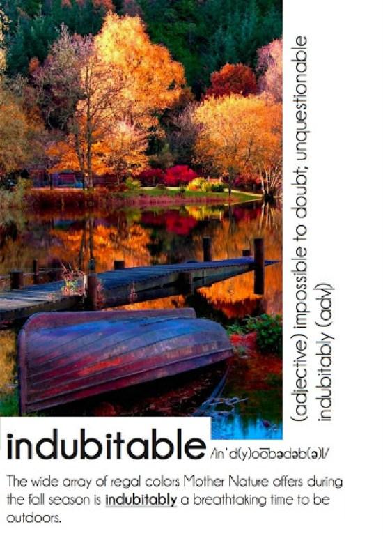 indubitably