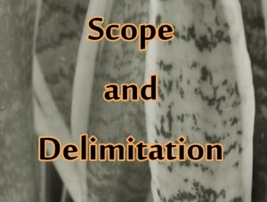 Sample Scope And Delimitation – Thesis Notes