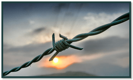 Barbed Wire Boundary