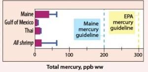 mercury by type of shrimp