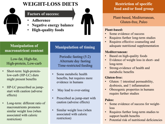 Which Diet Works Best For Weight Loss? – The Skeptical Cardiologist