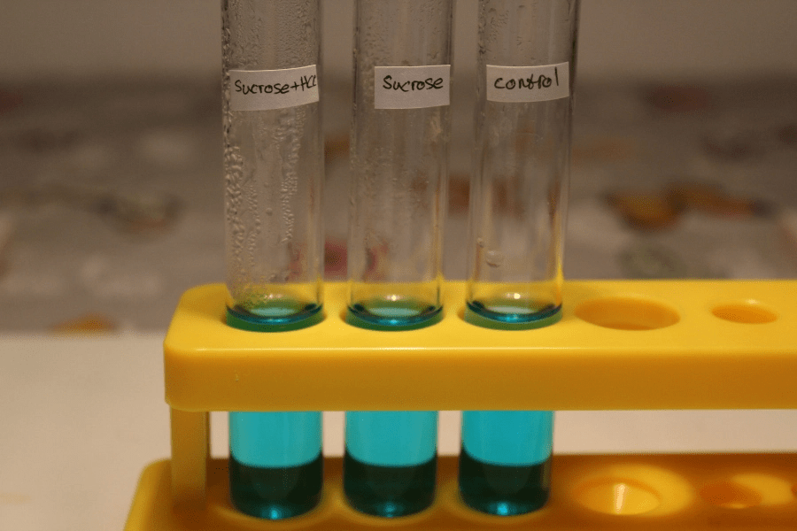 blue test tube sucrose control yellow rack