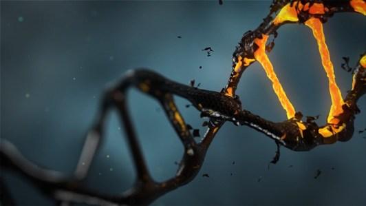 DNA double helix orange black scales
