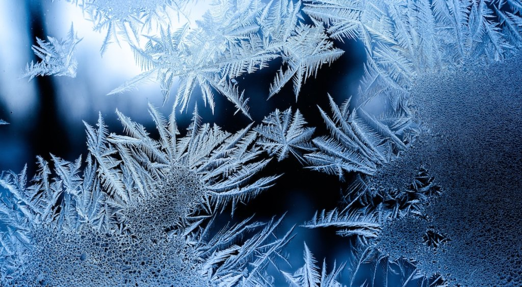 ice crystals snowflake cell death