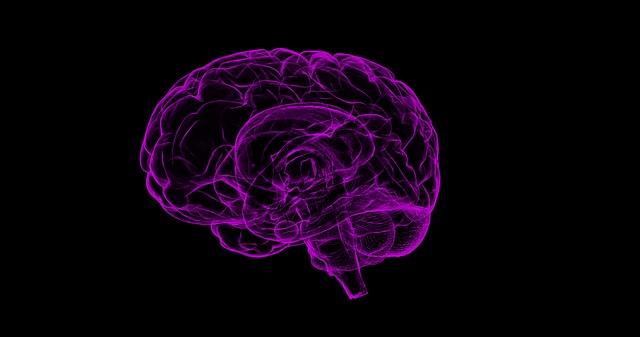 purple brain components on black background