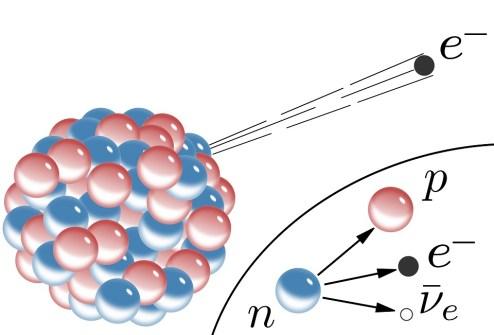 beta minus decay proton electron antineutrino