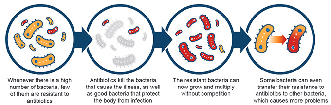 how antibiotics resistance develops