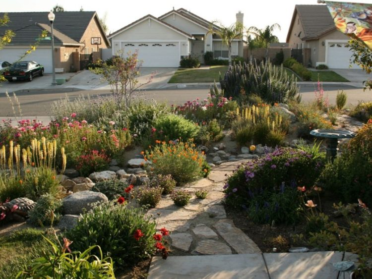 Make Your Backyard More Appealing with Drought Tolerant Landscaping Design 10