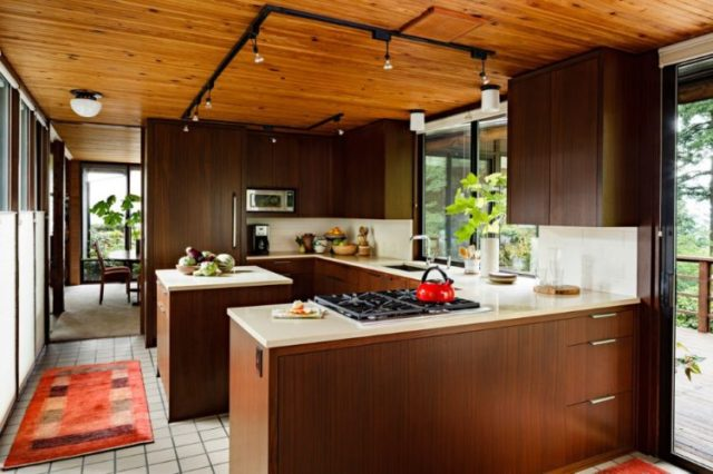 Fascinating Mid Century Modern Kitchen