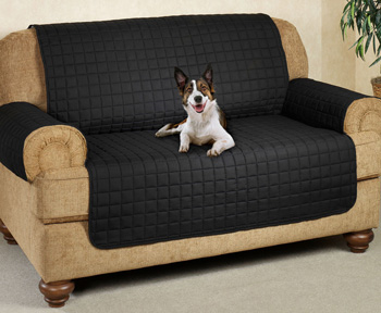 sofa coverings dogs bed sears usa cat proof couch and protectors top 10 2019 update the dog on cover