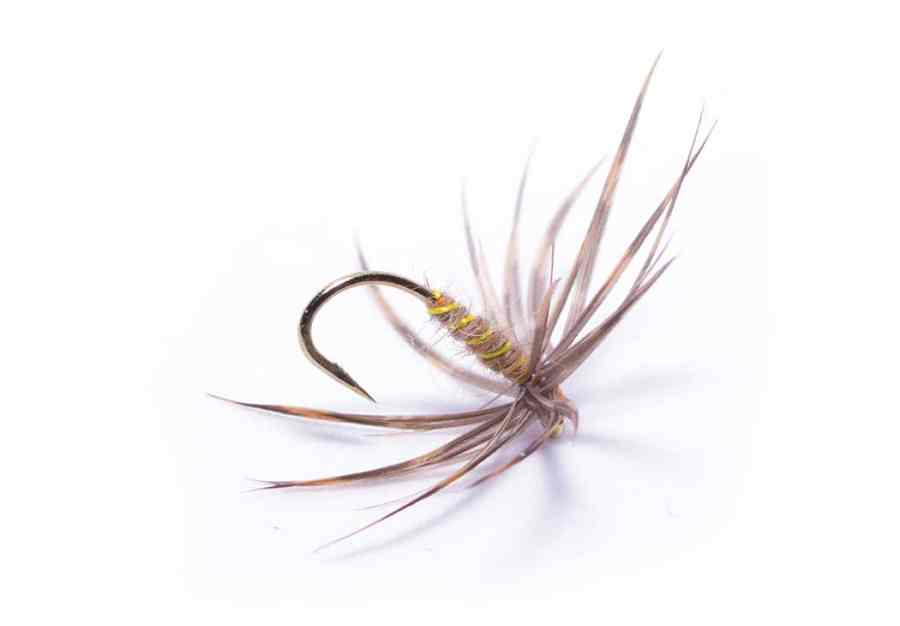 Duel Cruik North Country Spider