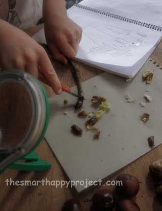 nature journal with sticky buds