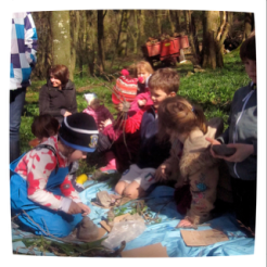 a smart happy project activity in the woods
