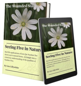 symbolism of 5 pointed star in nature ebook