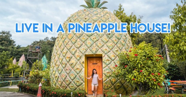live in a pineapple house