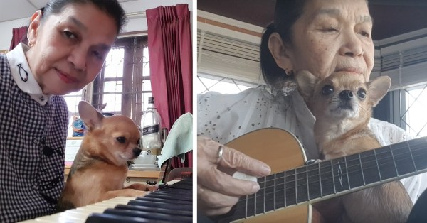 Sweet Grandma Sings Ballads To Her Dog And Even Plays The Piano, Guitar, And Drums
