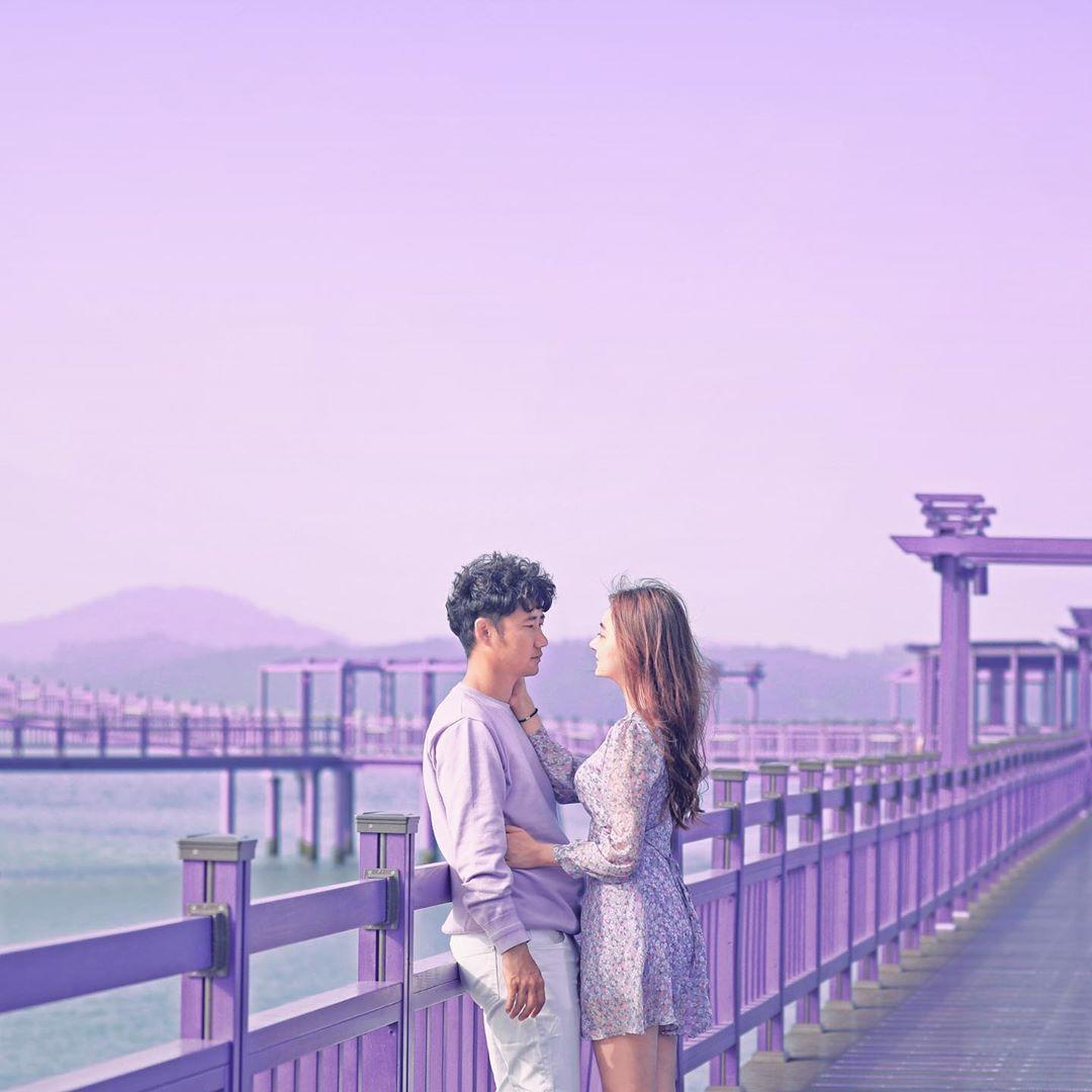 South Korea Has A Purple Island With Lavender Field & Violet ...