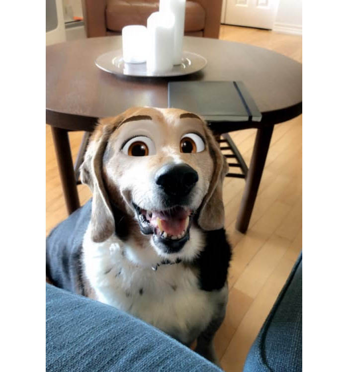 dog disney filter 2