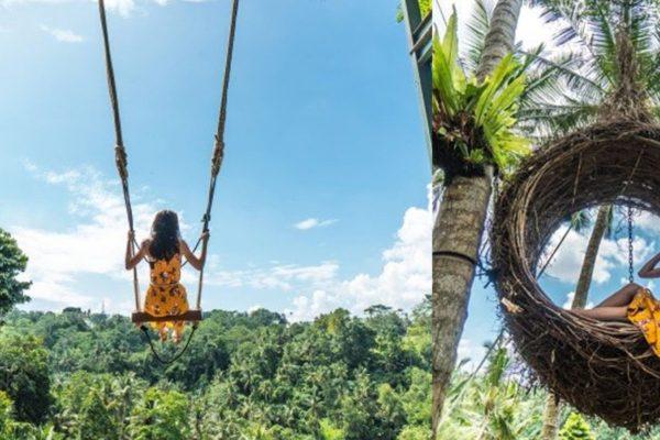 Image result for bali swings ubud